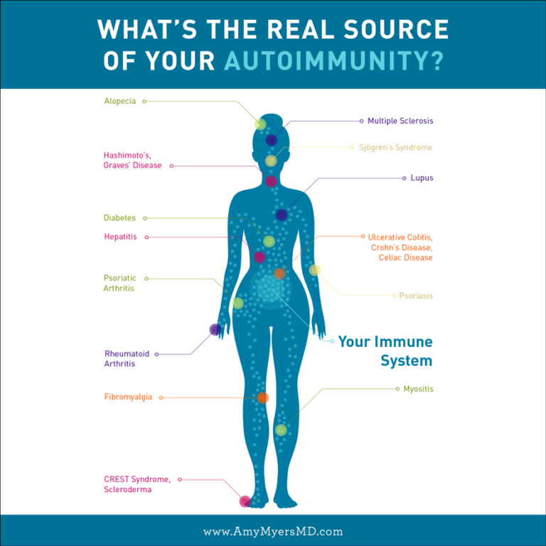 The Leaky Gut and Autoimmune Connection Autoimmune