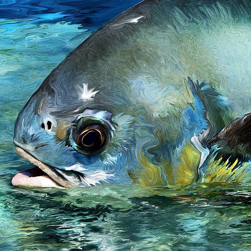 Fly fishing art permit fish painting peixes fbjigs for Permit fly fishing
