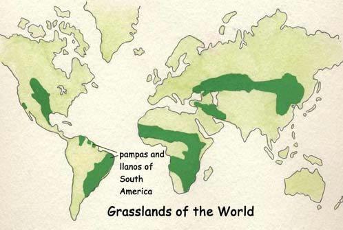 Pampas Of South America Grassland World Geography