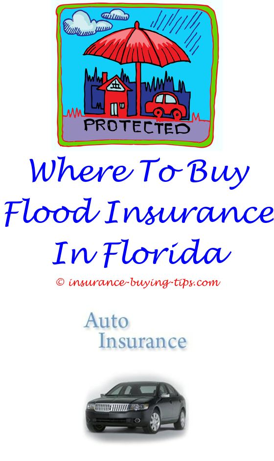 Car Insurance Quotes Florida Endearing Triple A Car Insurance Free Quote  Car Insurance Rates Car . Design Ideas