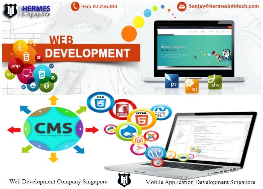Progressive web applications are vital for businesses who