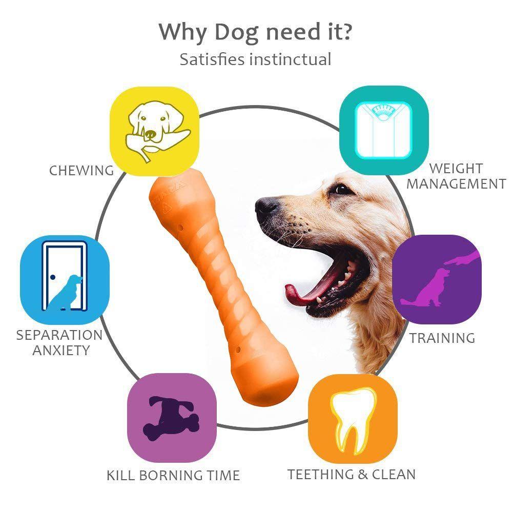 Aizara Durable Dog Bone Chew Toy Regular Floatable Dental Bone