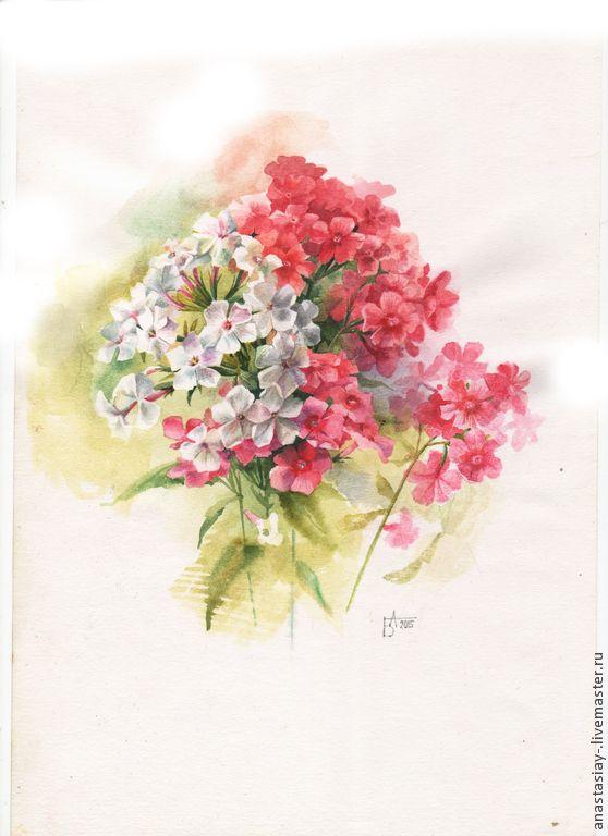 Купить Флоксы - брусничный, флоксы, цветы, акварель ...