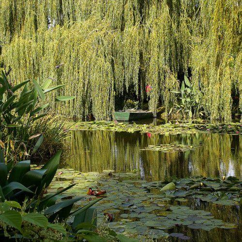 Gardens of Monet, Giverny, France byatsjebosma