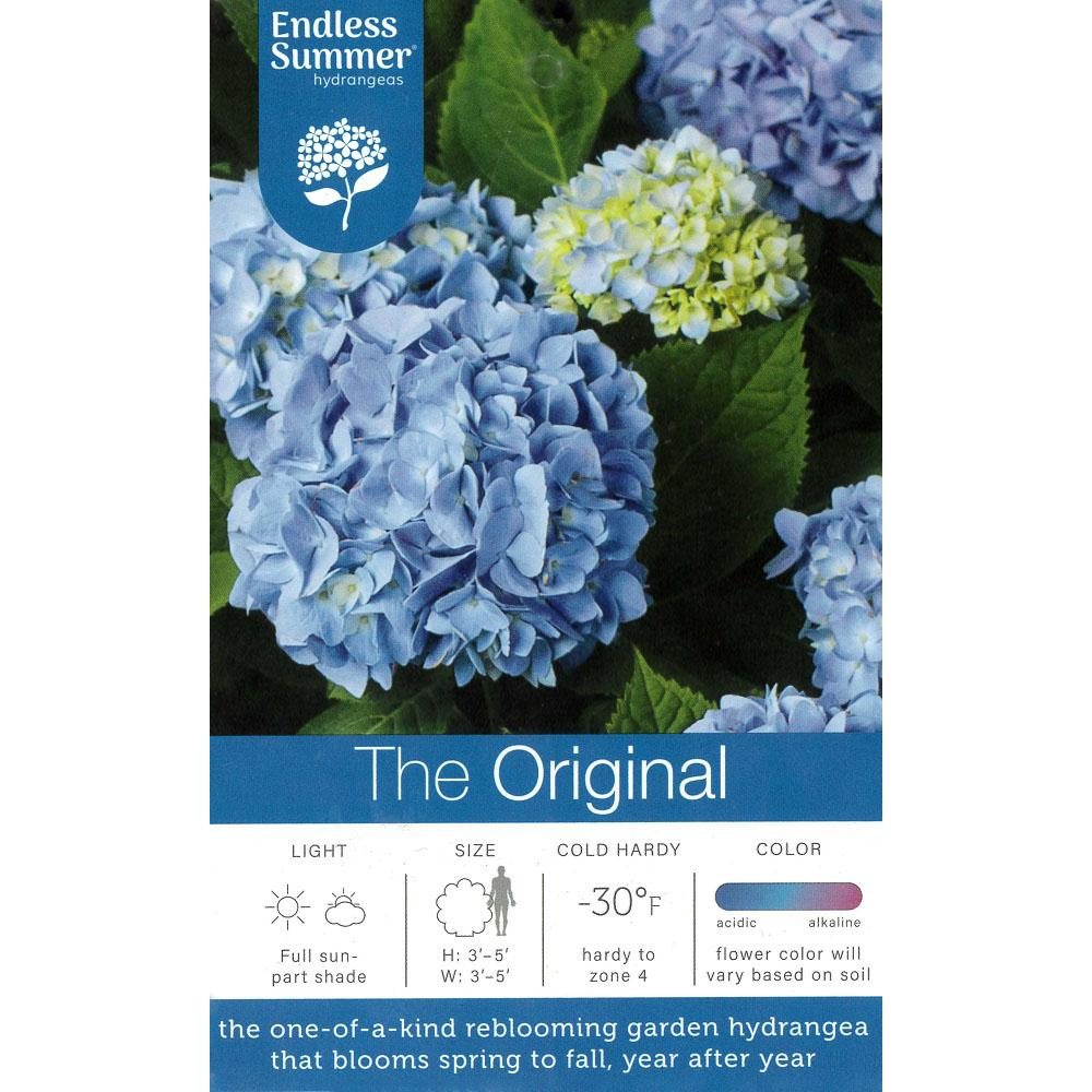 Endless Summer Endless Summer 2 Gal Original Hydrangea Plant With Pink And Blue Flowers 14746 In 2020 Endless Summer Hydrangea Planting Hydrangeas Summer Hydrangeas