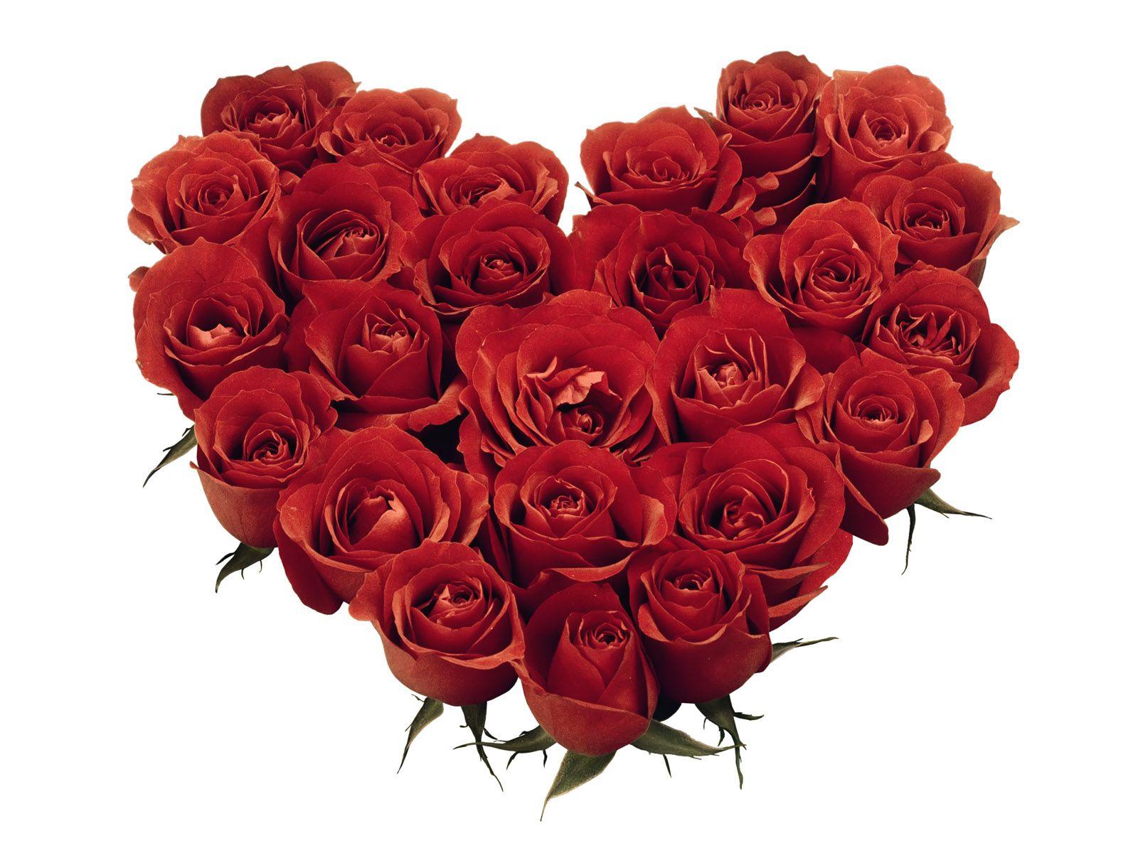 Valentine Day Gift Ideas for Boys/Girls in 2015 | Happy Valentine ...