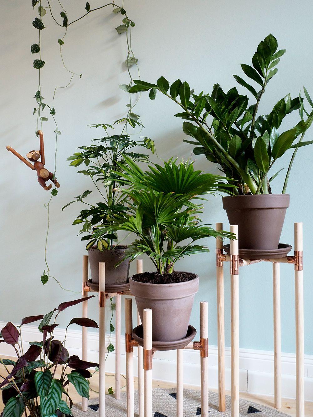 dschungel zu hause diy pflanzenst nder aus kupfer und holz kupfer diy projekte und pflanzen. Black Bedroom Furniture Sets. Home Design Ideas