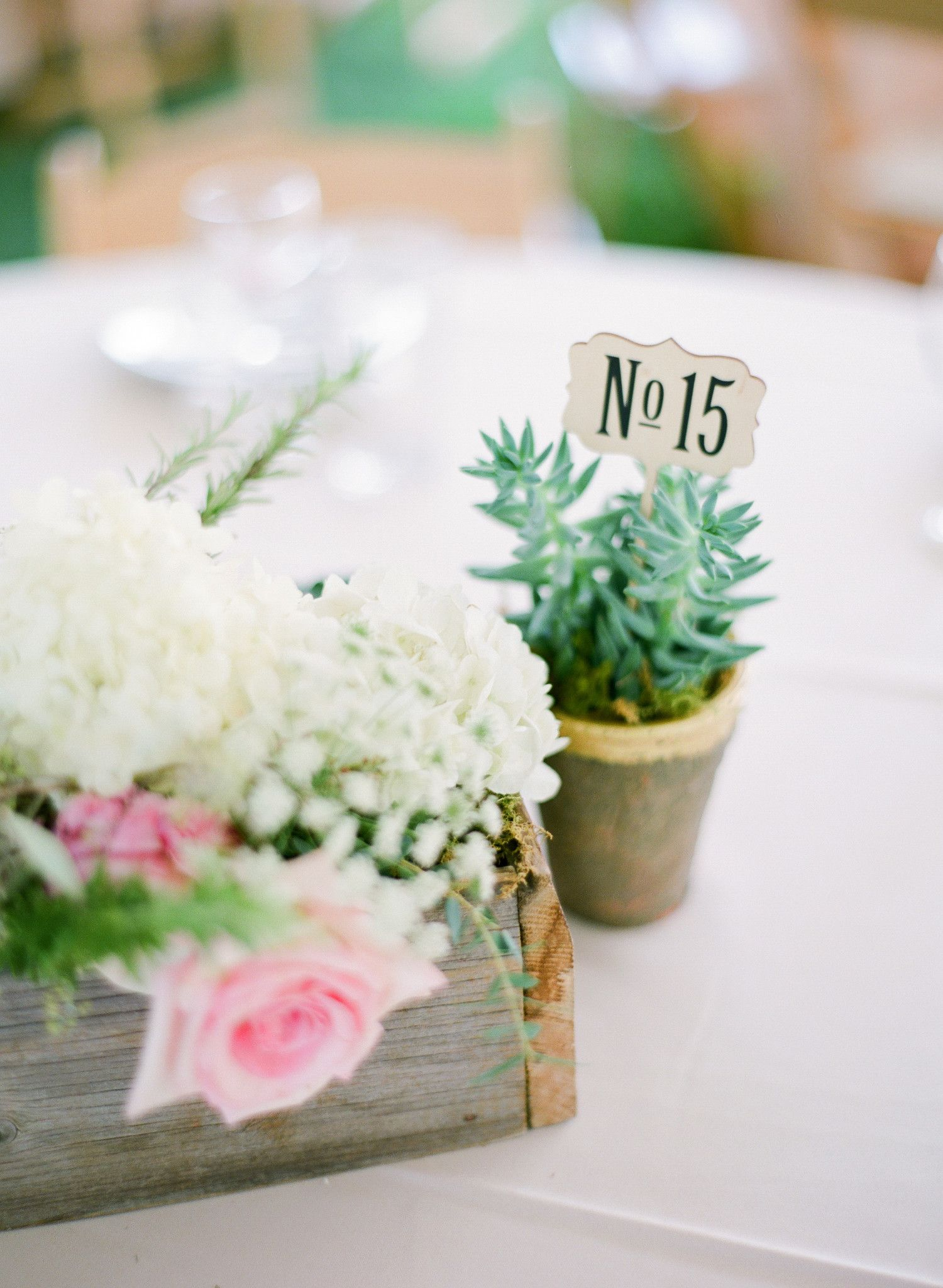 Potted plants always add a fun element to wedding centerpieces. We ...