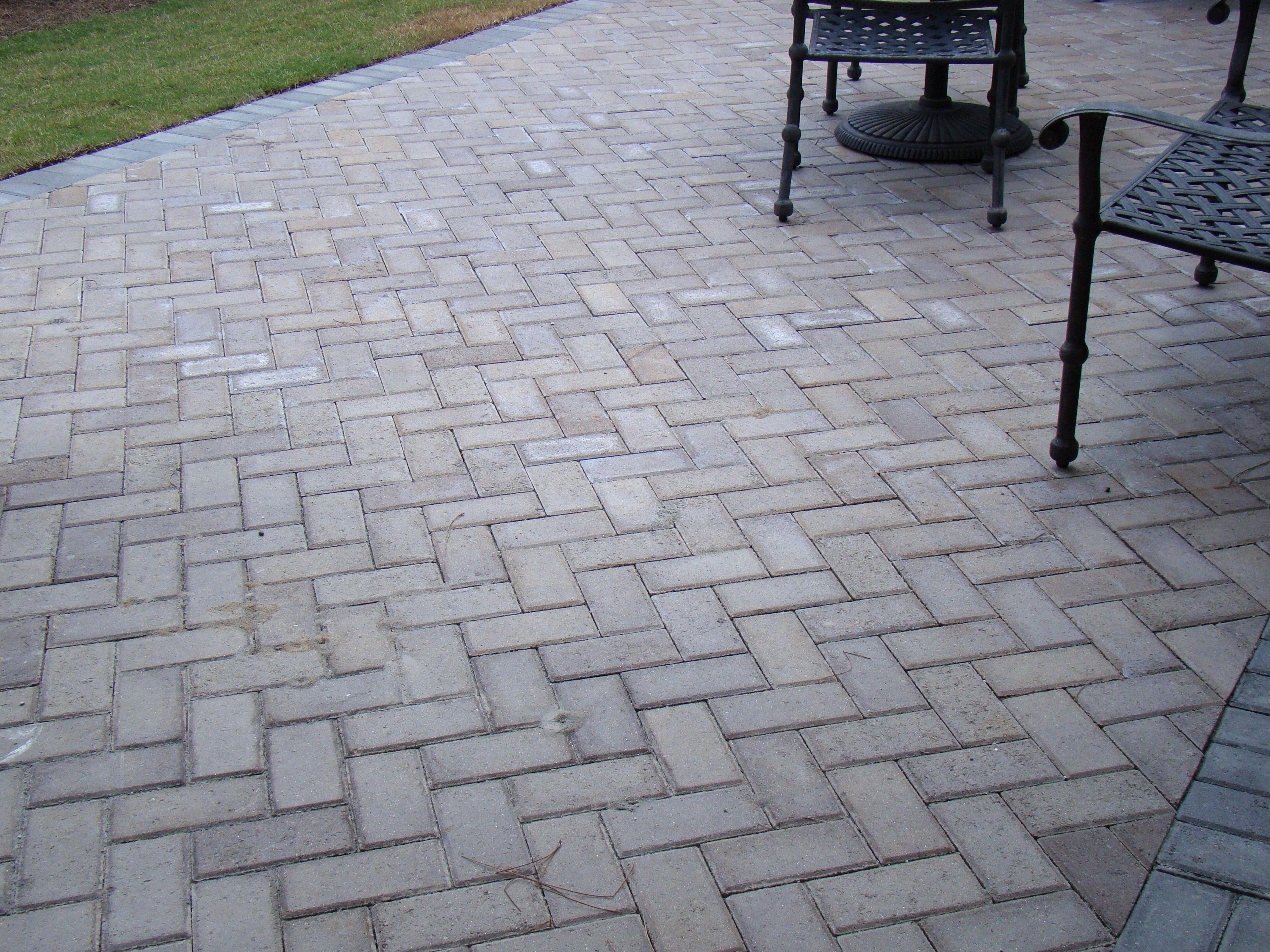 Pattern 45 Degree Herringbone Field Piedmont Border Charcoal