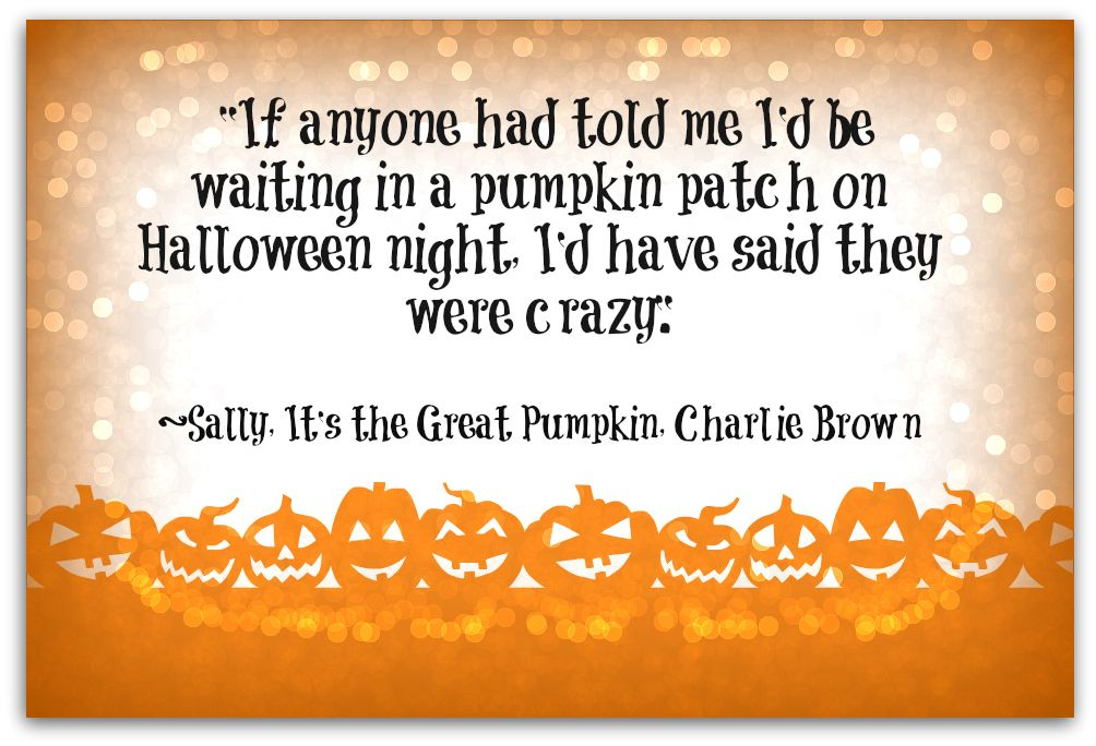 It's The Great Pumpkin Charlie Brown Quotes Charlie Brown And The Great Pumpkin Quotes  Sally From It's The .