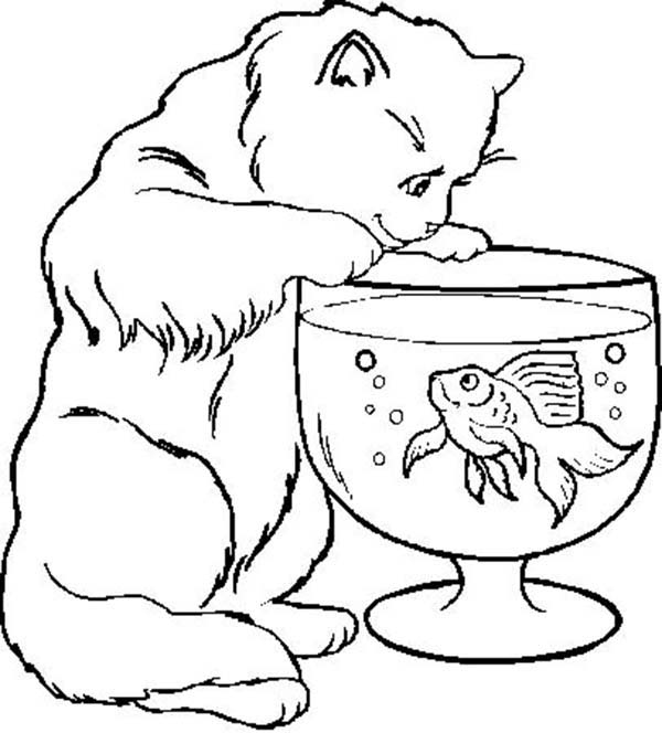 Cat Trying To Catch Fish In Fish Bowl Coloring Page Download Print Online Coloring Pages For Fre Animal Coloring Pages Cat Coloring Page Fish Coloring Page
