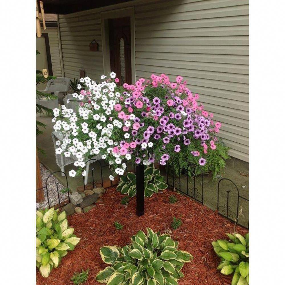 Photo of Accu-Tek 5 ft. Aluminum Flower Pot Tree
