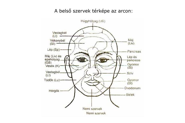 a gyomor és az arc foltosabb