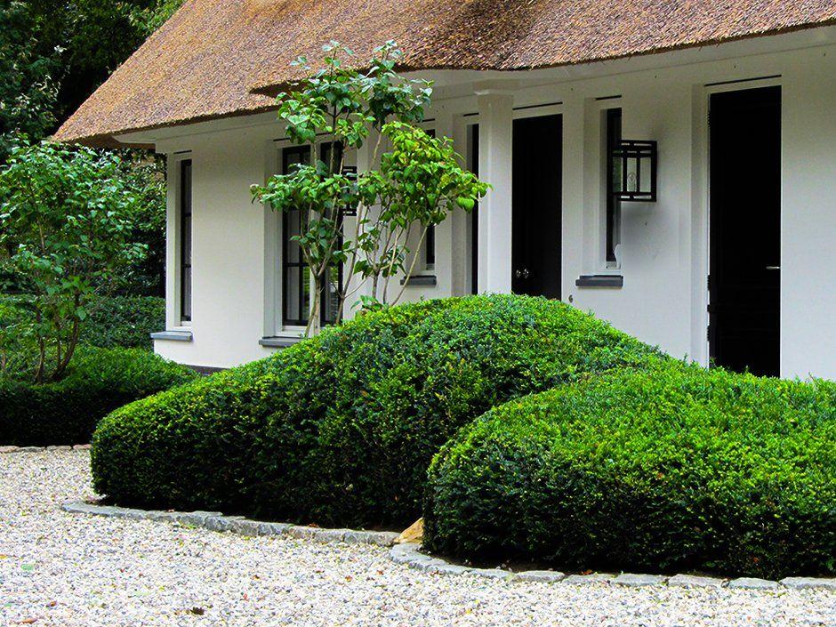 Entree taxus wolken luxe villa in leersum plants garden garden