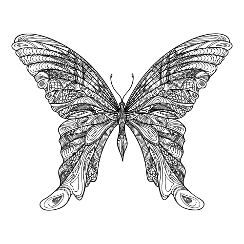 Adult Coloring Pages Amazing Butterfly Adult Coloring Pages Dibujos Dibujos Para Colorear Adultos Mariposas