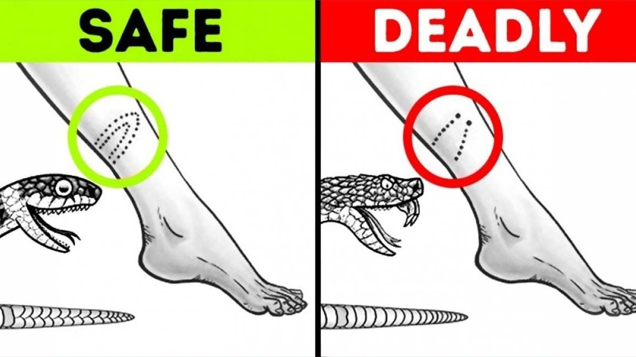 17 IMPORTANT SURVIVAL HACKS THAT CAN SAVE YOUR LIFE ...
