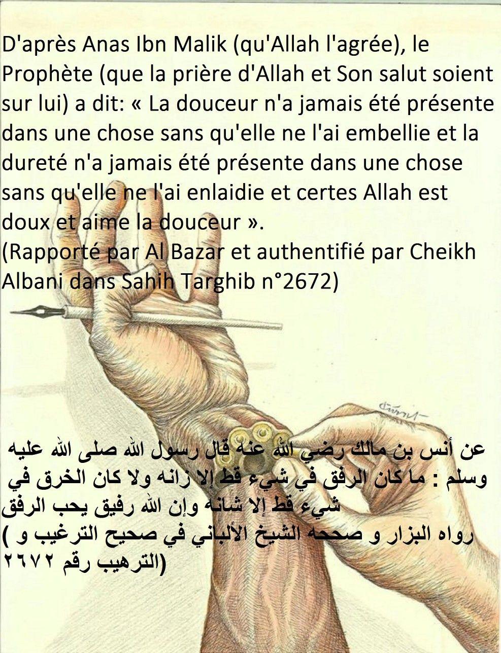 Pin On Hadith Paroles De Nos Pieux Predecesseurs