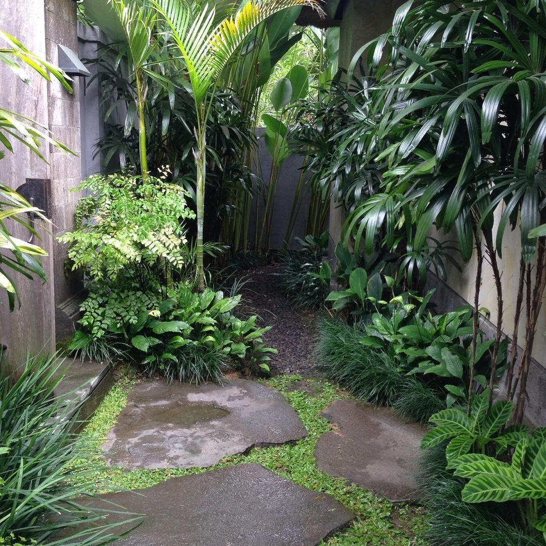 Balinese courtyard | Minimalist garden, Tropical garden ...