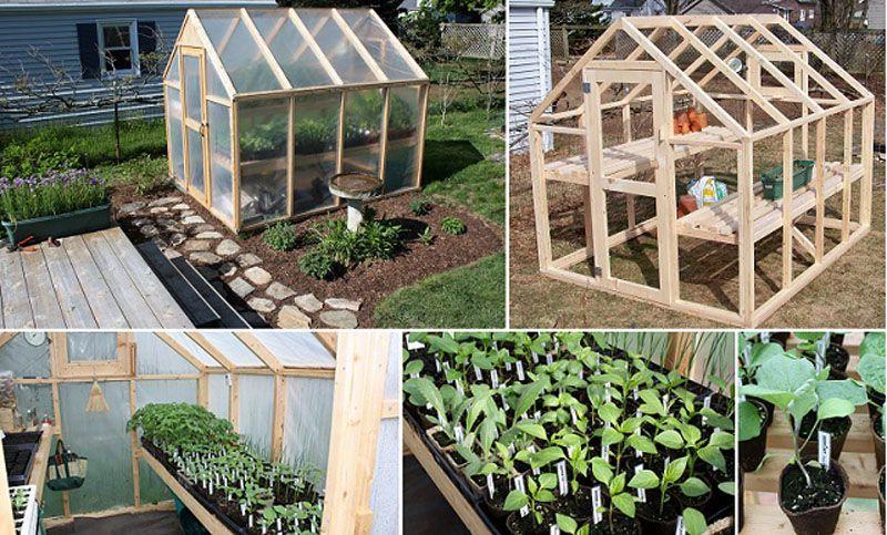 Cómo construir un invernadero con estructura de madera | Pinterest ...