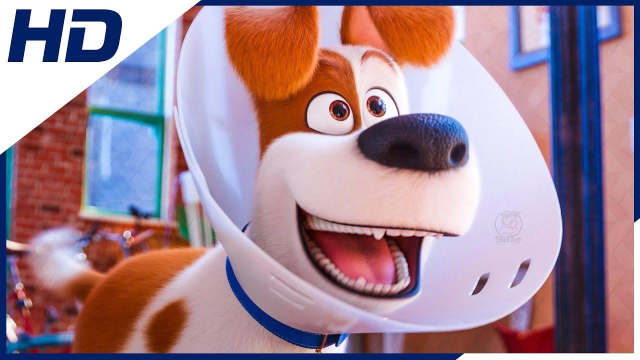 Pets 2 A Vida Secreta Dos Bichos Trailer 5 Dublado Hd Vida