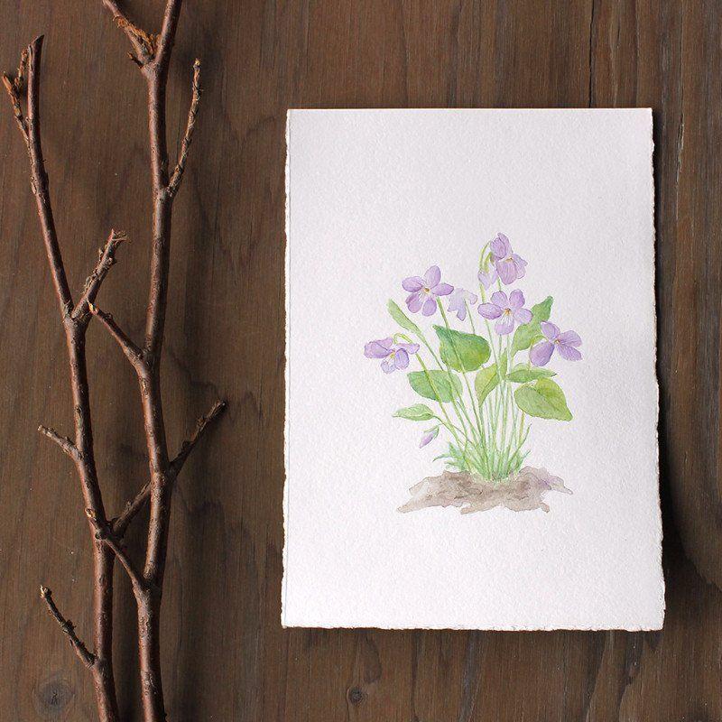Original watercolour painting of wood violets (viola sororia) by Kathleen Maunder