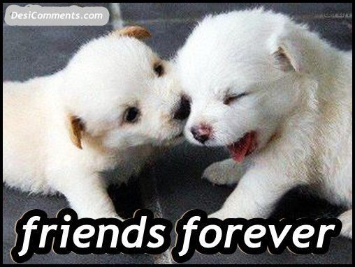 Quotes For > Best Friends Forever Poems That Make You Cry