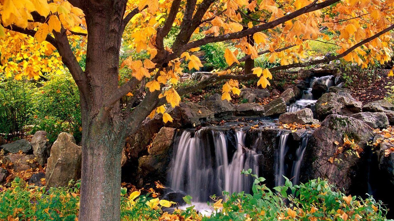 beautiful sceneries - google search | wallpapers | pinterest