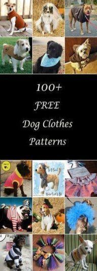 Best Crochet Projects For Dogs Sweater Patterns 15+ Ideas #dogcrochetedsweaters Best Crochet Projects For Dogs Sweater Patterns 15+ Ideas #dogs #crochet #dogcrochetedsweaters Best Crochet Projects For Dogs Sweater Patterns 15+ Ideas #dogcrochetedsweaters Best Crochet Projects For Dogs Sweater Patterns 15+ Ideas #dogs #crochet #dogcrochetedsweaters