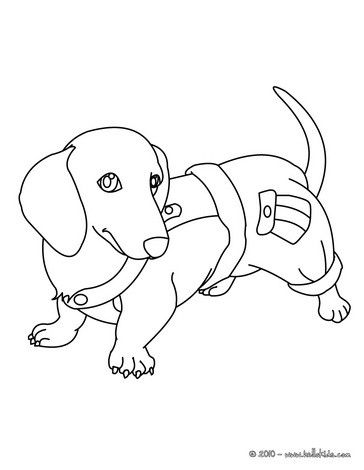 Dachshund Puppy Coloring Page Nice Dog Drawing For Kids More Animals Coloring Pages On Hellokids Dog Coloring Page Puppy Coloring Pages Dog Drawing For Kids