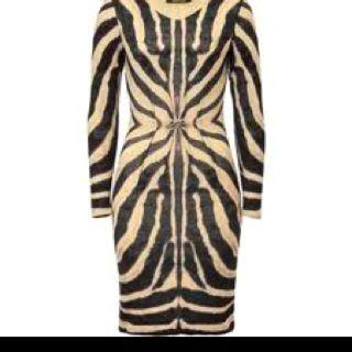 Roberto Cavalli Zebra-print dress