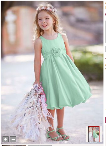 David's Bridal Mint green dress for flower girl. Davids