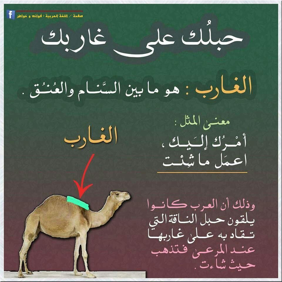 معنى الحبل على الغارب Islamic Phrases Beautiful Arabic Words Spirit Quotes