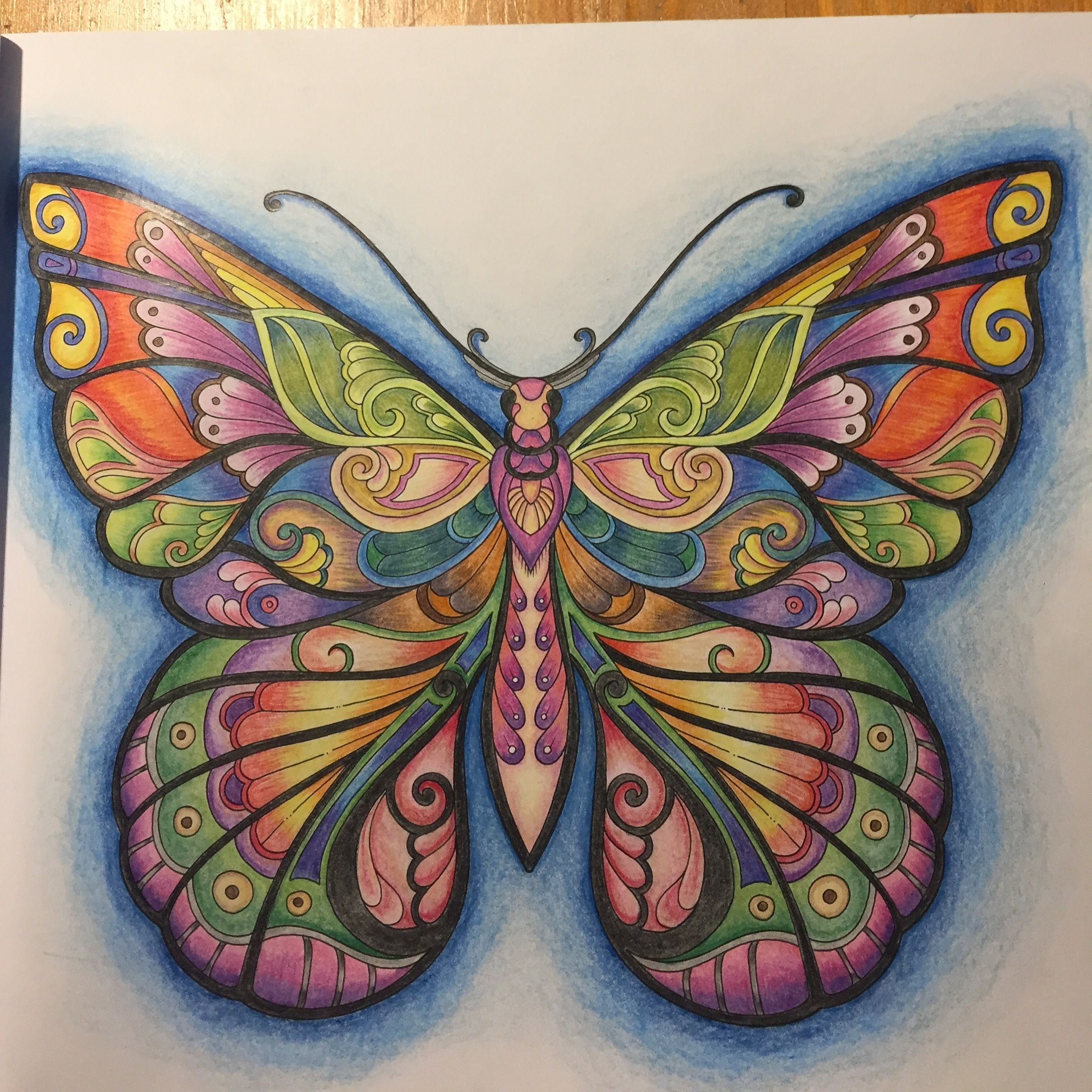 Johanna Basford Magical Jungle Paint With Staedtler Butterfly Art Coloring Book Art Butterfly