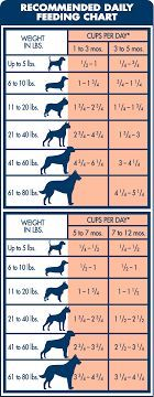 Blue Buffalo Large Breed Puppy Food Feeding Chart Large Breed