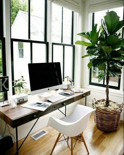 Minimalist Living Room   Http://savemoreanimals.org/minimalist Living