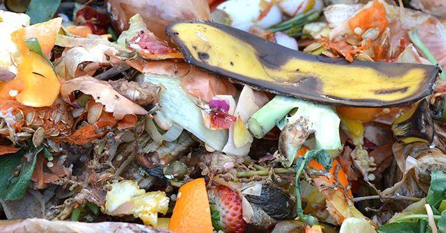 Spreco di cibo in UE: petizione per ridurlo entro il 2030