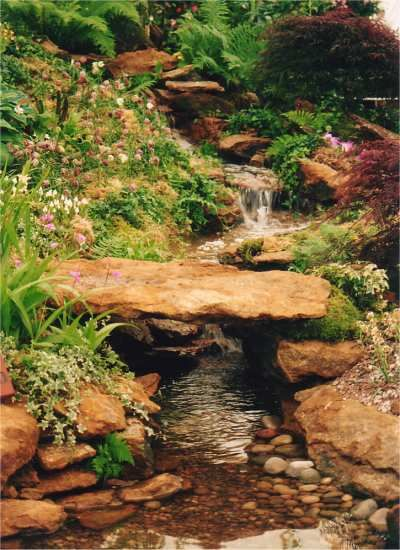 What S Wrong With My Garden Pond Water: Internet Gardens: Water Features - What's New