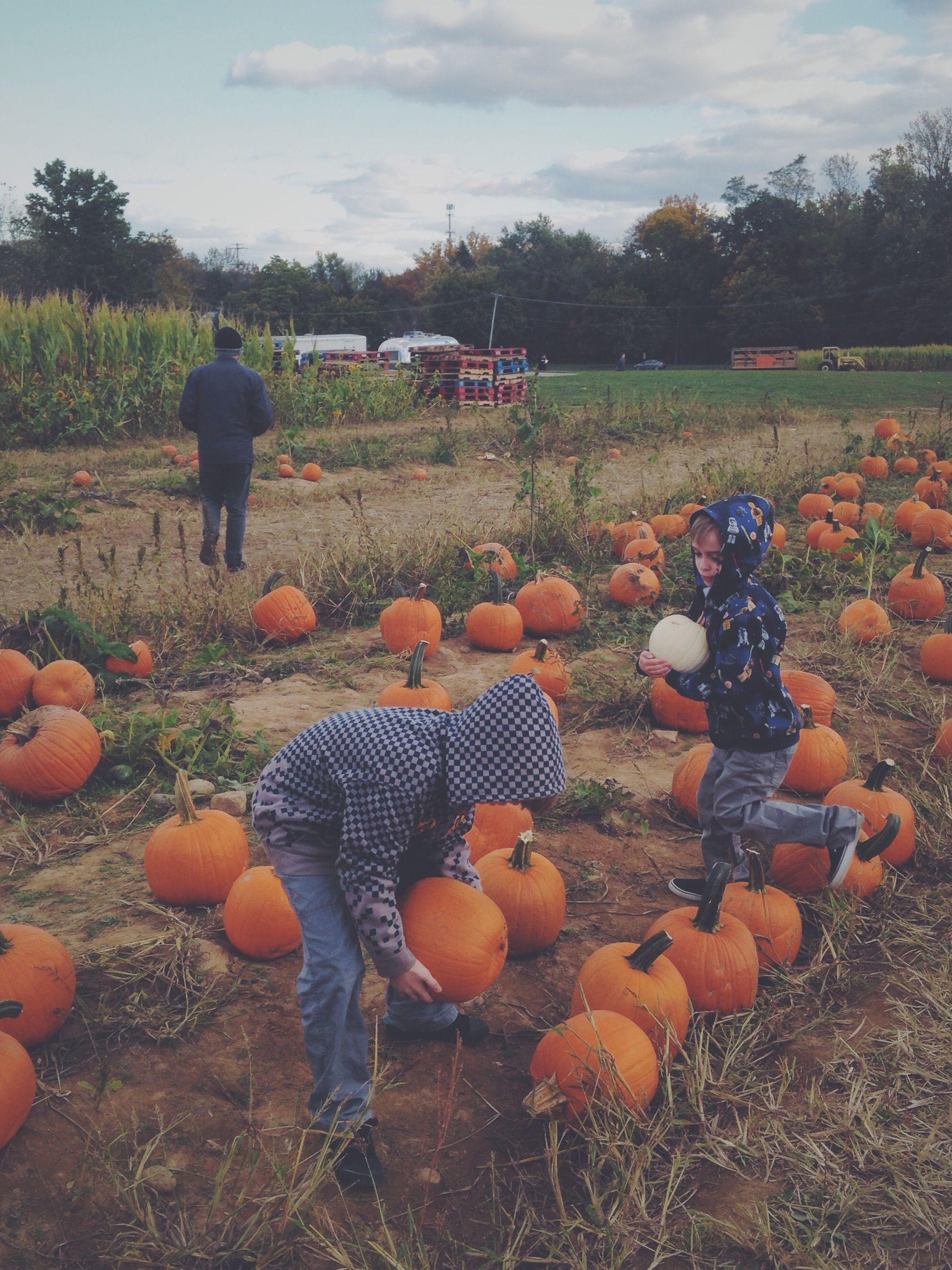 Why We Don't Celebrate Halloween Halloween, Celebrities
