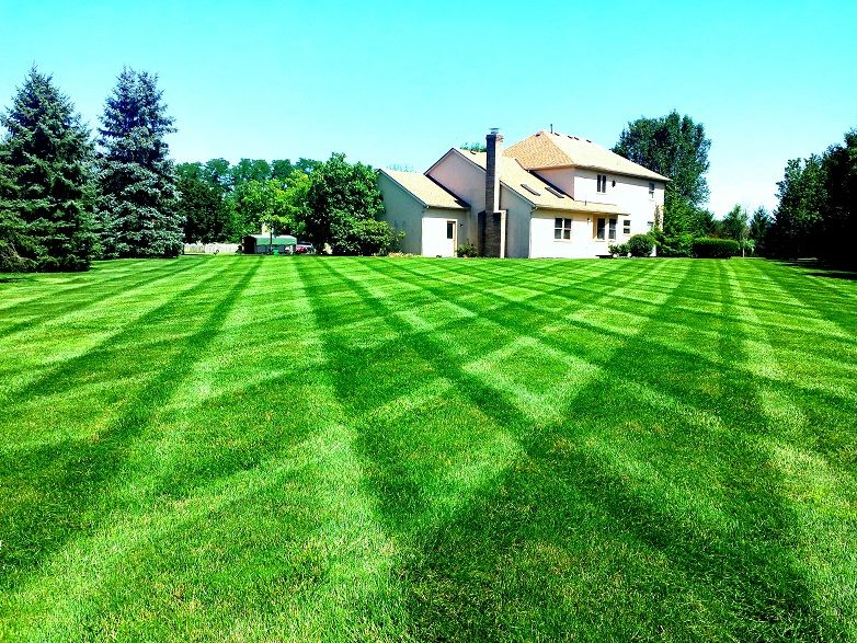 TIPS FROM A GREEN THUMB Aerate your yard at least once a