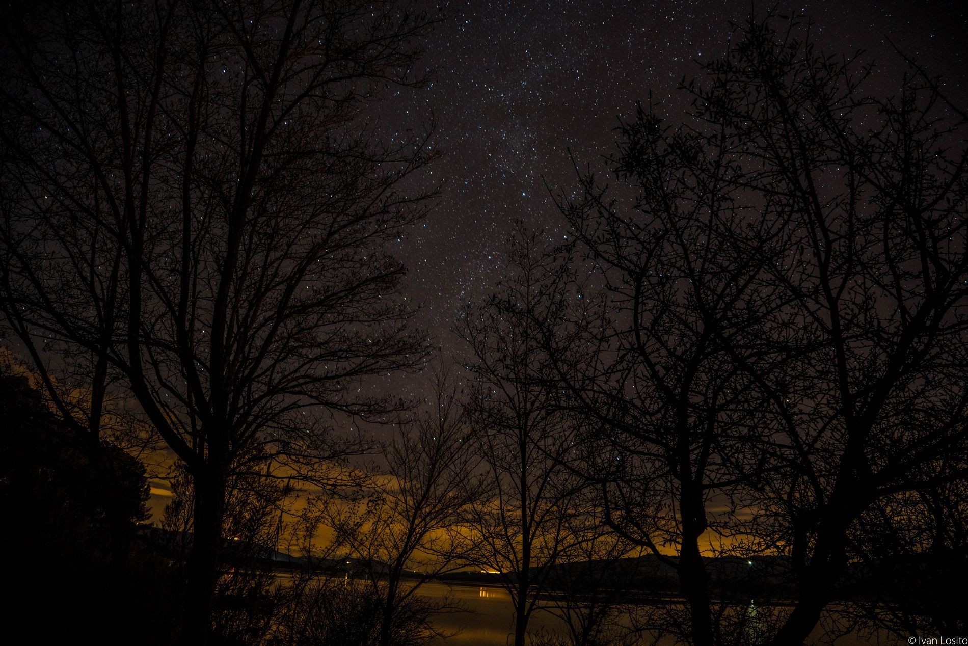 Photograph stars and trees by ivan losito on 500px
