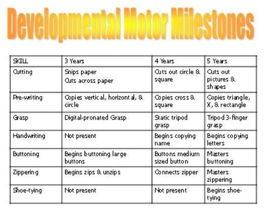 Development milestones for motor skills also milestone chart disabilities and pinterest rh
