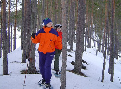 Lumikenkeilijät Petkeljärven kansallispuiston harjumaisessa. Kuva: Katri Suhonen
