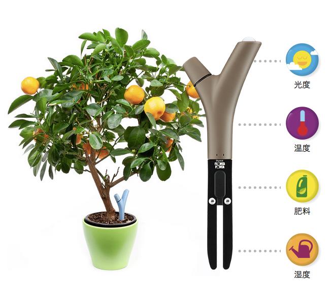 スマホで植物を管理できるセンサー「Parrot Flower Power」が国内発売へ | Web@