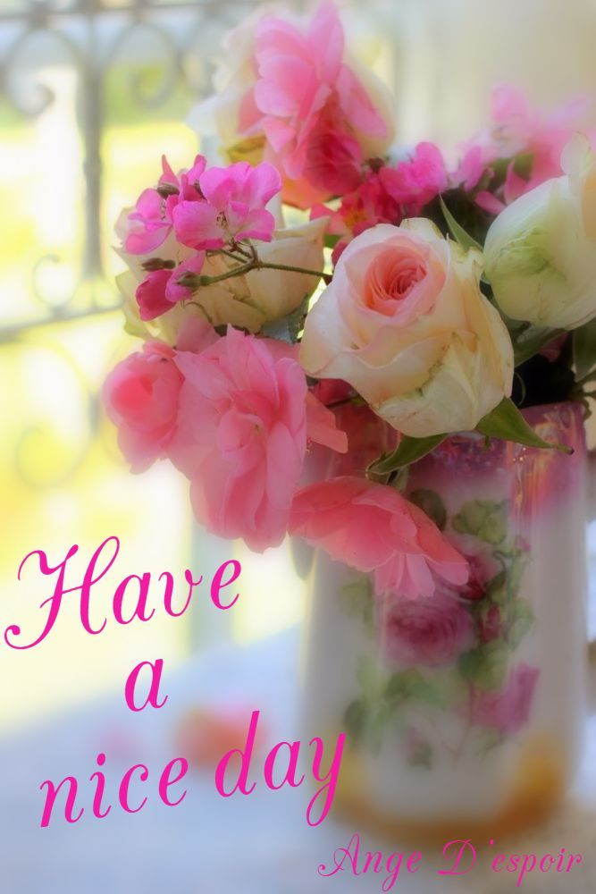 Wishing You A Lovely Day Kd Pinterest