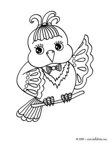 Canary Coloring Page Bird Coloring Pages Butterfly Coloring