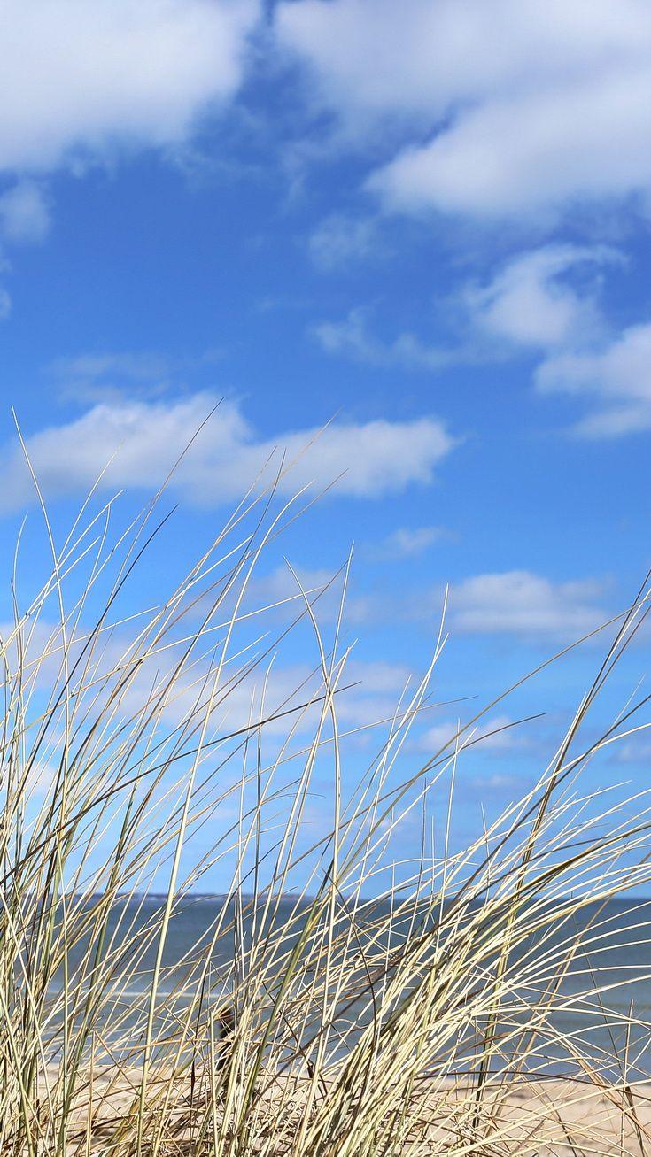 Blick Durch Das Dünengras Auf Die Ostsee Bei Scharbeutz