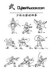 Pdf shaolin training kung fu