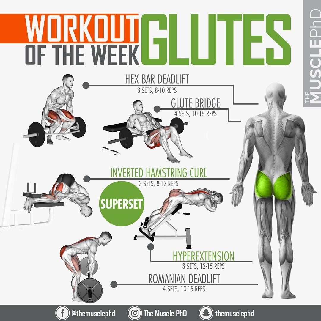 Pin On Glutes
