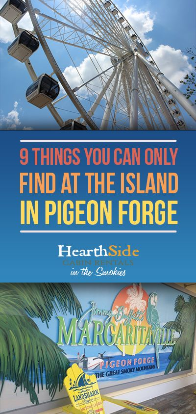 4c7ed9d75a 9 Things You Can Only Find At The Island In Pigeon Forge Férias Em Tennessee