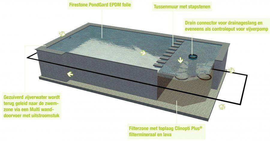 Zwemvijver vijver zwembad in n totaaloplossing for Wat kost een zwemvijver aanleggen